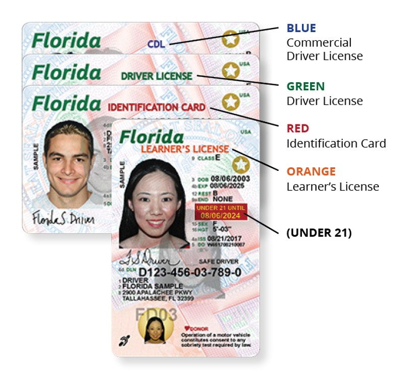 Parts of the Florida license